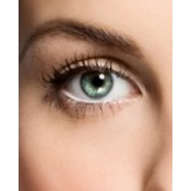 Eyelashes and Brow