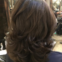 haircut and blowdry miami salon